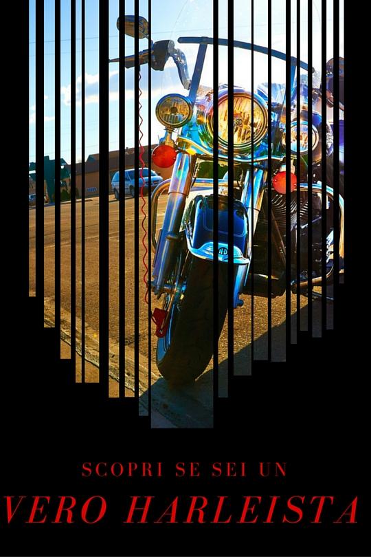 Quanto conosci la Harley Davidson?